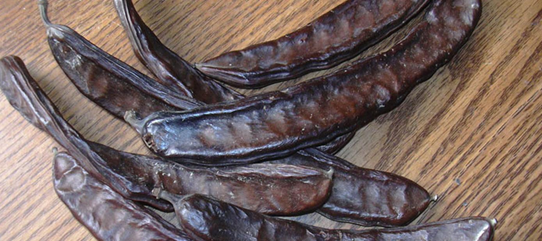 Afbeeldingsresultaat voor خواص گیاه فلوس